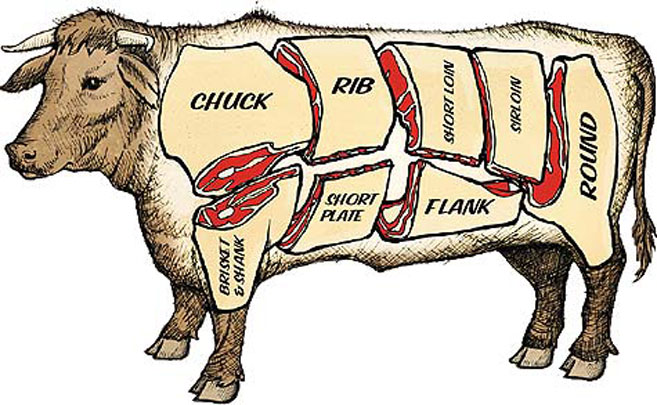 Beef Meat Parts Illustration on Cow Eye Diagram