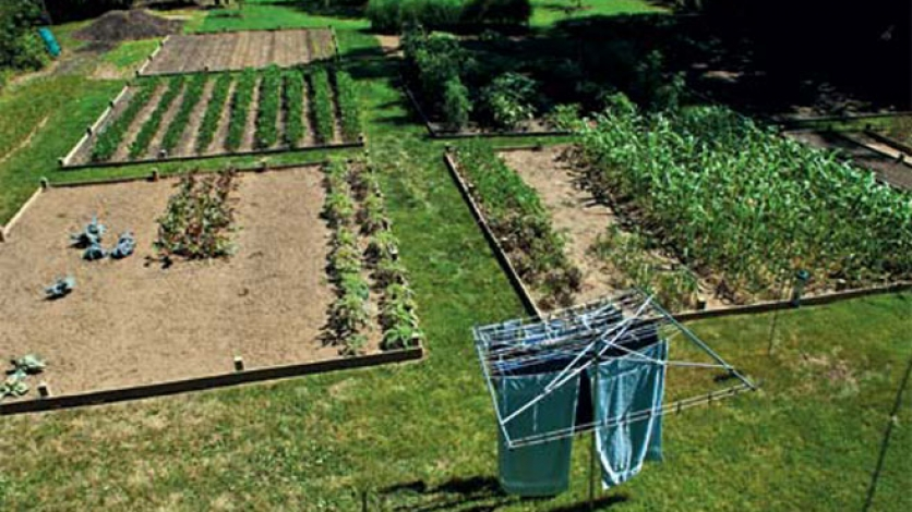 garden plots for farming