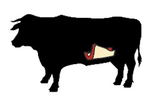 beef flank cow illustration