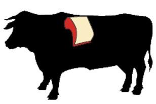 beef rib cow illustration