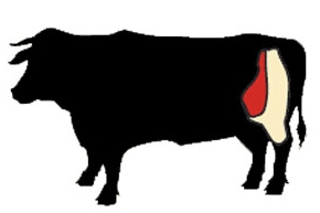 beef round cow illustration