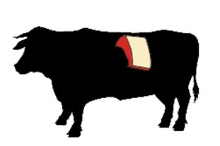 beef short loin cow illustration