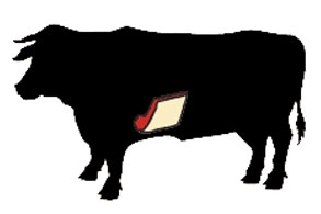 beef short plate cow illustration