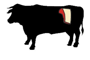 beef sirloin cow illustration