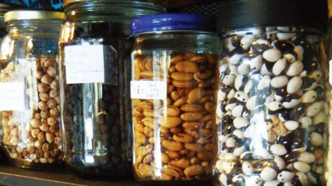 dried seeds in jars